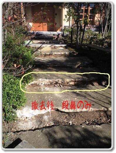 玄関への階段、アプローチ 段鼻のクヌギの木を撤去